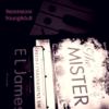 The Mister – E. L. James