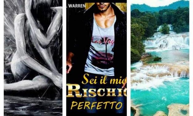 SEI IL MIO RISCHIO PERFETTO – C. L. Waren, RECENSIONE
